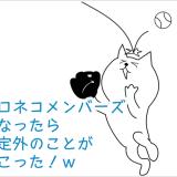 クロネコメンバーズ カード