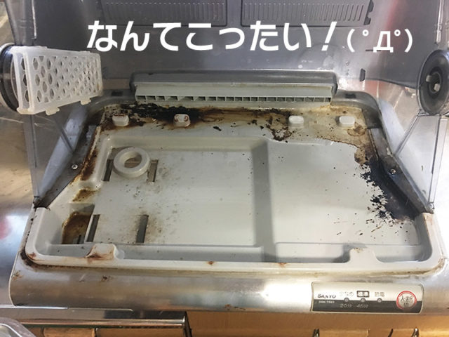 食器乾燥機をそうじしてたらエグいの出てきた!!【水垢どころじゃないよ】のすごく汚れている乾燥機の内部の写真