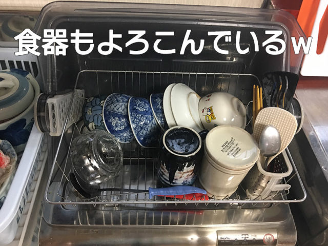 食器乾燥機をそうじしてたらエグいの出てきた!!【水垢どころじゃないよ】のきれいになった乾燥機で食器を乾燥している画像